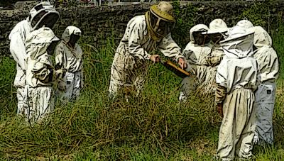 élèves de classes élémentaires découvrant l'apiculture en classe de découverte